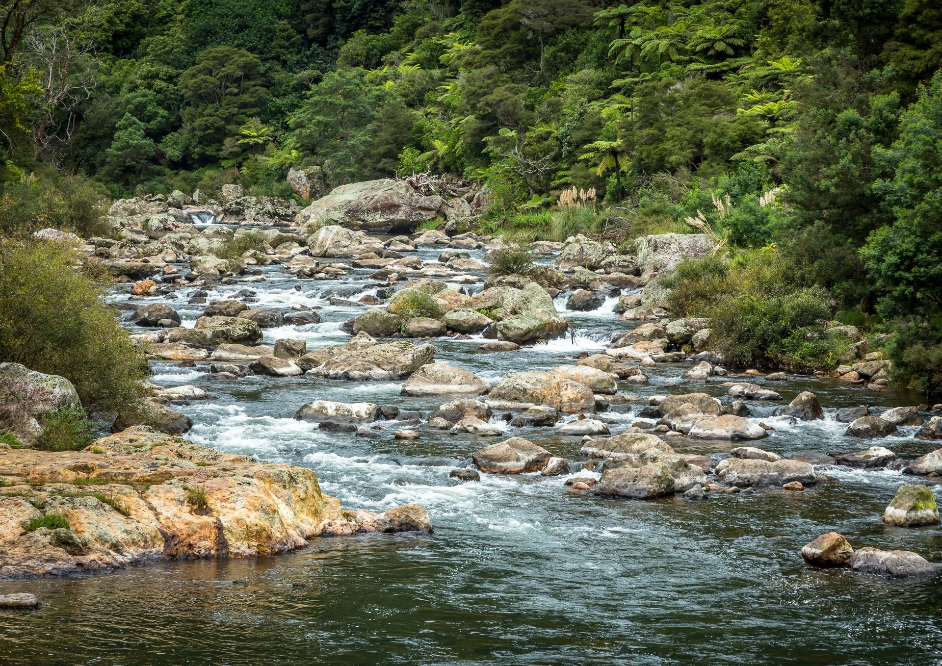 Stream at Karangahake Gorge, New Zealand