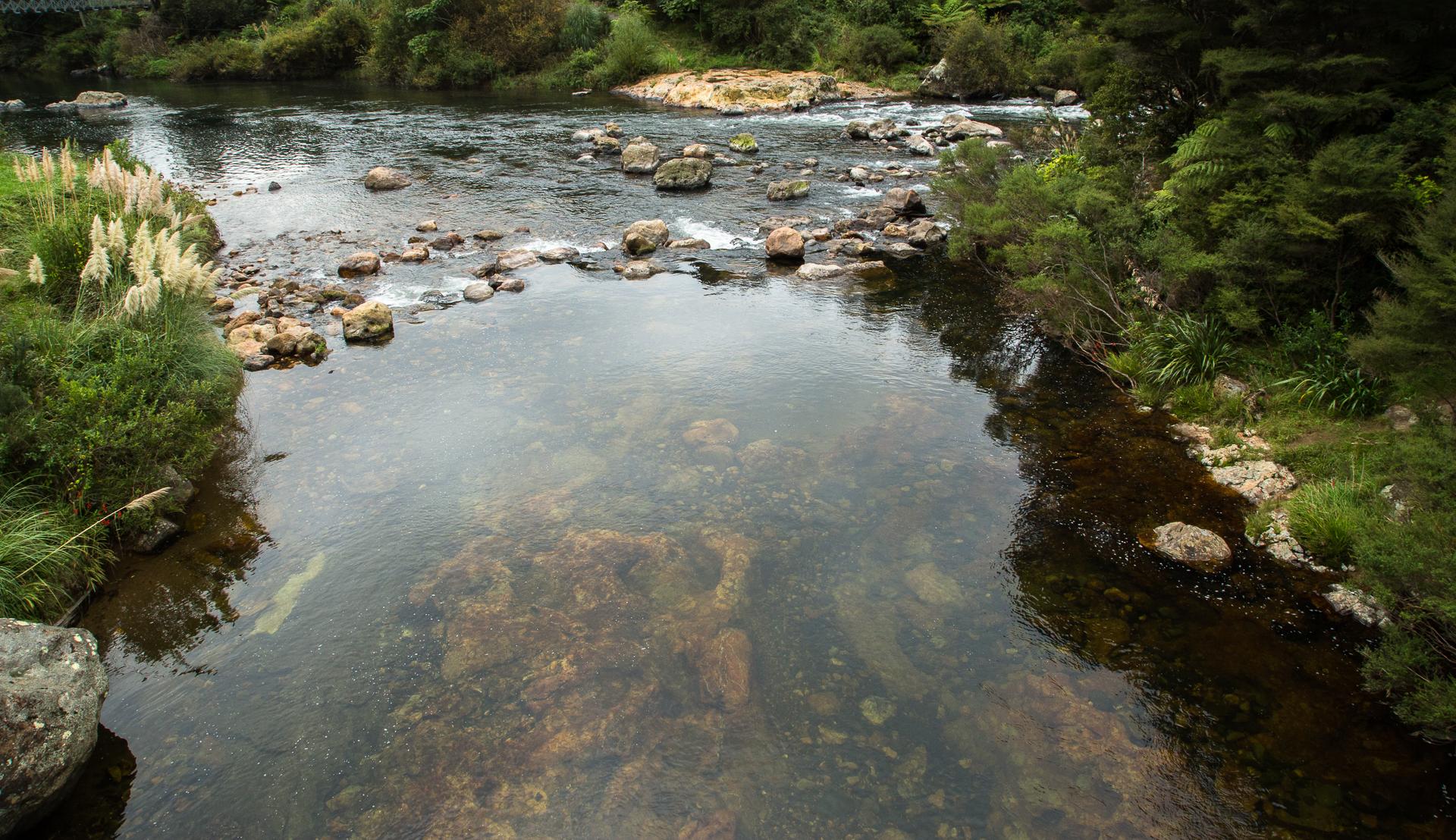 Rock pool in mountain stream