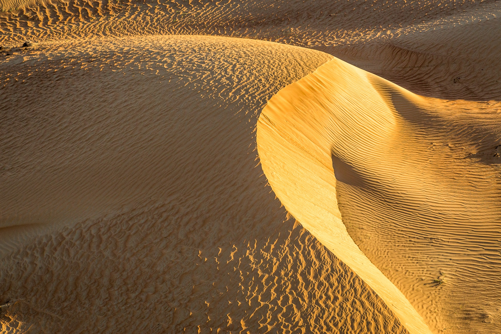 Untouched crescent-shaped sand dune