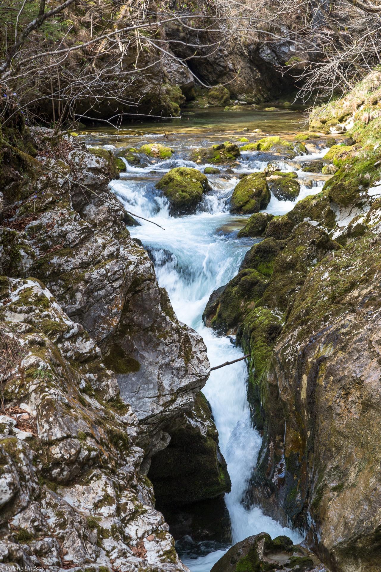 Mountain stream in Slovenia-2
