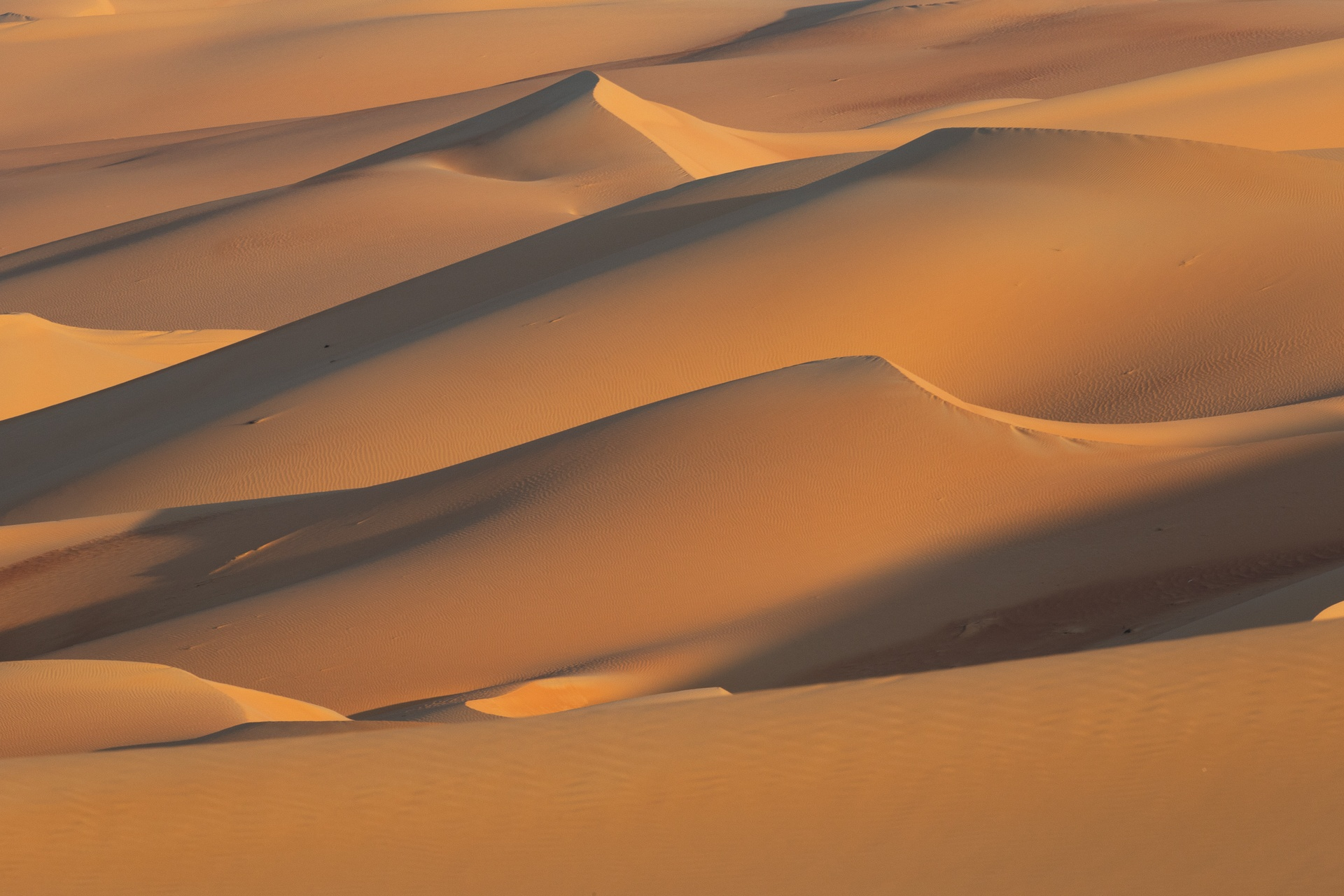 A 'sea' of sand dunes