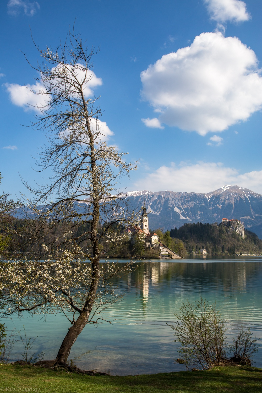 Morning light on Lake Bled