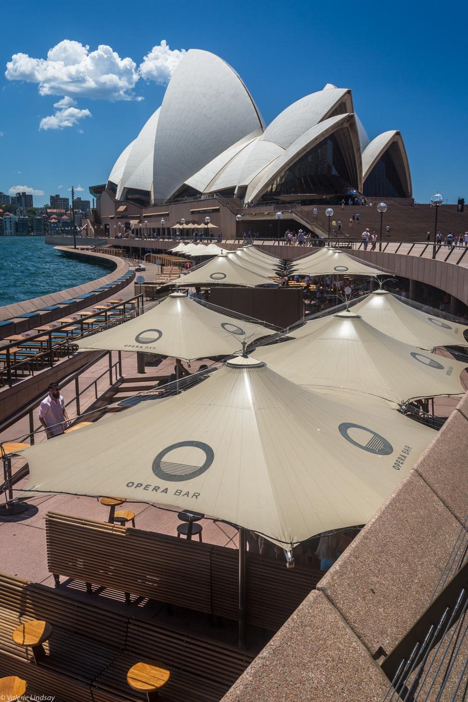 Sydney Opera House and umbrellas