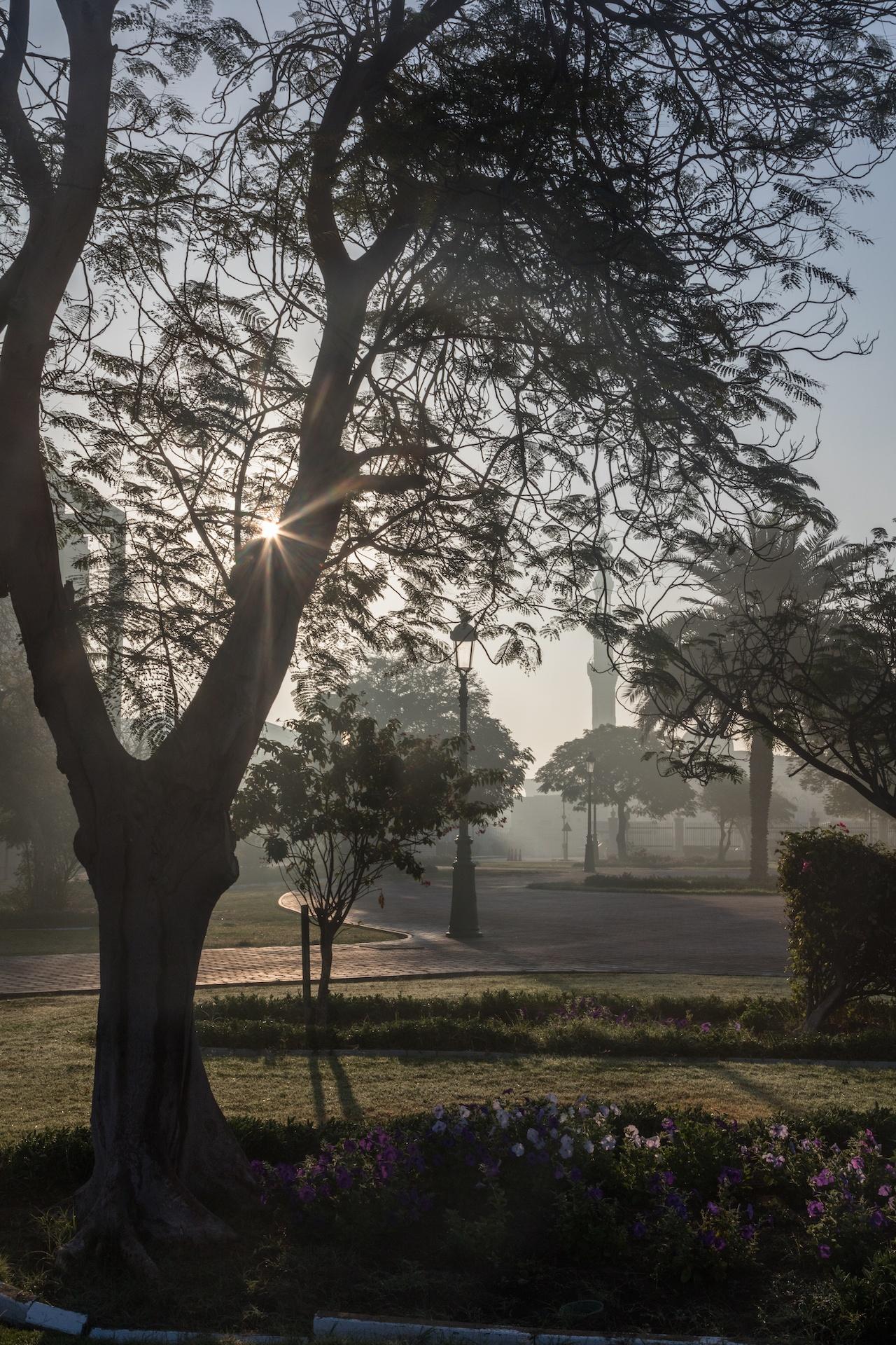 Morning sunburst as fog lifts